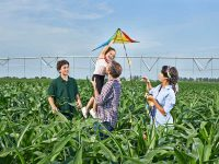 Yara lanza Yara Premium Club, un nuevo programa de fidelización para agricultores