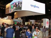 Syngenta celebra en Fruit Attraction su 150 aniversario en el sector de semillas hortícolas