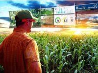 Foodies voluntarios para una experiencia de realidad virtual