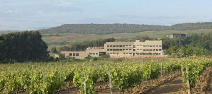 El ICVV organiza hoy un seminario online sobre 'Estreses abióticos y calidad de uva'
