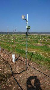 Dispostivo datalogger con varios dispostivos que monitorizan cultivo, planta, suelo y microclima