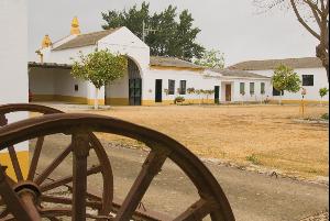 Las Torres-Tomejil