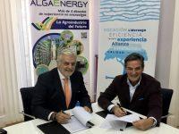 AlgaEnergy y DF Grupo, acuerdo de distribución