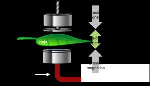 El sensor de Yara Water Solution en detalle