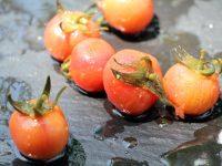 Innovación vegetal de Syngenta en Berlín