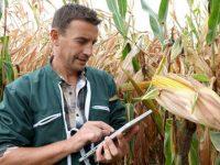 Agenda de digitalización en Desarrollo Rural