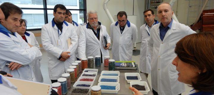 Syngenta propone un nuevo enfoque para la lucha contra jopo en el cultivo de girasol