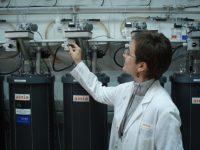 Más de 300 pymes de agroalimentación, interesadas en la implantación de una planta de biogás a pequeña escala