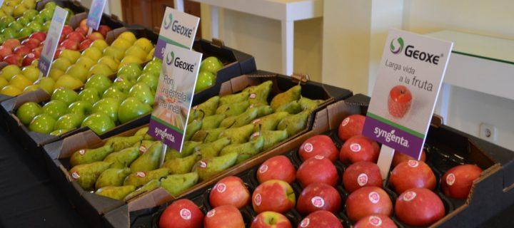 Syngenta presenta Geoxe, su nuevo producto para alargar la vida de la fruta