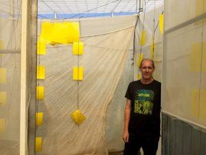 Emilio José Fuentes extrema las precauciones en la entrada de su invernadero con la colocación de trampas adhesivas.
