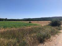 AgriAdapt, formación gratuita para ayudar al sector agrario a adaptarse al cambio climático