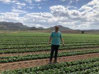 Agrícola El Niño del Campo, máxima calidad desde el semillero hasta la mesa