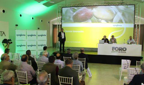 Terafit, el herbicida de Syngenta para el control de malas hierbas en olivar