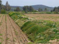 Red Agraria de Cultivos Sostenibles en fincas de Aragón, Cataluña y Extremadura