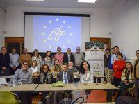 España, Portugal e Italia avanzan contra Xylella fastidiosa