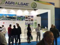 AlgaEnergy cierra con éxito su segunda participación en Agroexpo