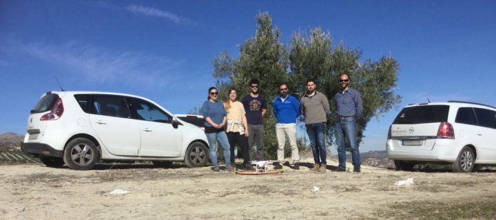 Proyecto Droneolive: anticipar el estado fisiológico y las necesidades nutricionales del olivar con drones