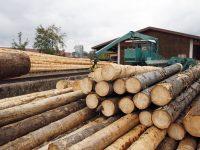 Agricultura convoca ayudas a la cooperación para el suministro sostenible de biomasa