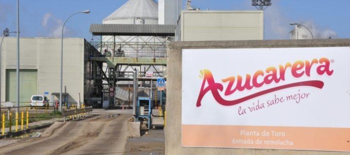Azucarera, asesoramiento agronómico en exclusiva llevado a cabo por equipos de alta cualificación