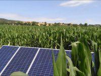 Instalaciones de riego por goteo con energía solar