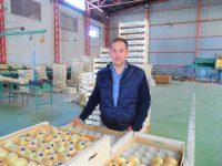 La Corona apuesta por mejorar la conservación de su cebolla con DOP