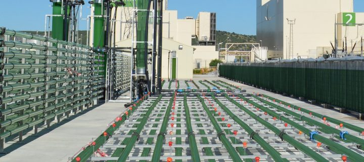 AlgaEnergy lanza un manifiesto para inspirar a pymes frente a la pandemia