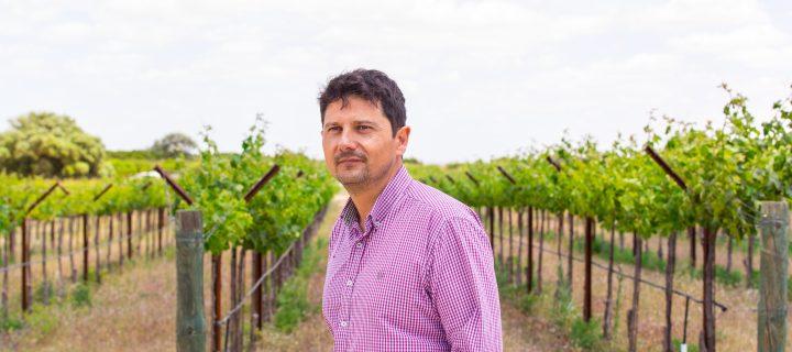 Dehesa de Luna apuesta por la calidad de sus vinos a través de nuevos sistemas de conducción