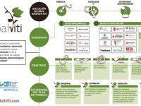 Globalviti, inteligencia artificial para luchar contra las enfermedades de la vid