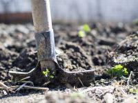Nace Ruralista, la primera compañía de Agrotech e Inversión Agraria en España