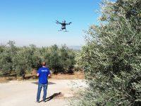 Asaja Córdoba destaca la importancia de la aplicación de las nuevas tecnologías al olivar