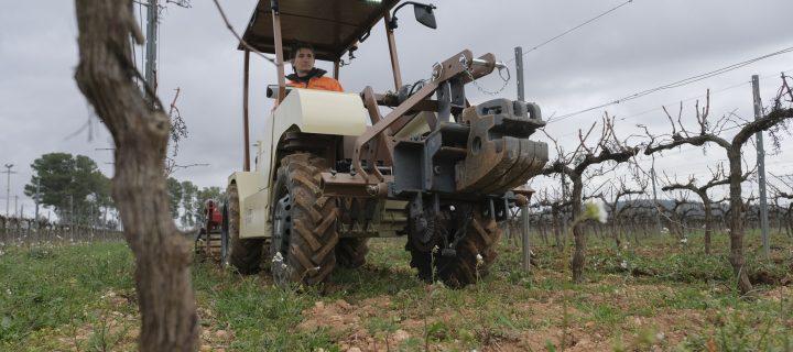 Familia Torres ensaya con un tractor eléctrico pionero en Europa para el viñedo
