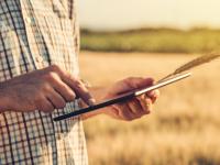 Nuevo curso online de buenas prácticas agrícolas en cereales
