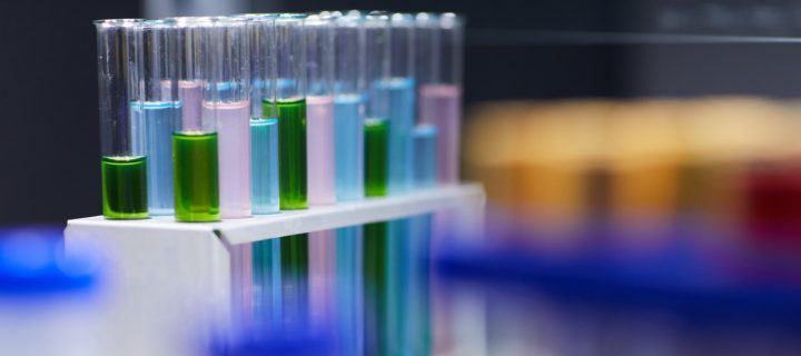 AlgaEnergy y la UCA ponen en marcha un nuevo proyecto de I+D+i