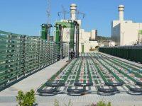 AlgaEnergy suma a su equipo internacional dos nuevas incorporaciones
