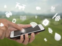 Sateliot permitirá disponer de IoT a la agricultura, la ganadería y al medio ambiente