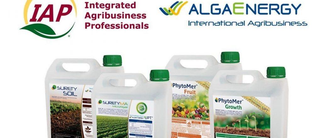 AlgaEnergy firma un acuerdo de distribución con una empresa estadounidense