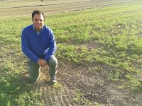 La Garbancera Madrileña impulsa el cultivo del garbanzo autóctono de Madrid con la elección de nuevas variedades