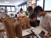 La colección del Banco de Germoplasma Hortícola del CITA se amplía con semillas navarras