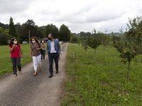 Investigan el cultivo de aguacate en Cantabria como alternativa de diversificación
