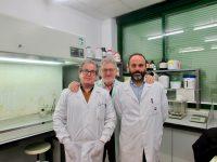Nuevas estrategias sostenibles para proteger el cultivo de fresa en el área mediterránea