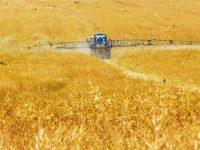 Desarrollan un nuevo pesticida natural que logra eliminar plagas y patógenos