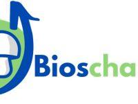 Nuevo sustrato sostenible alternativo y bioestimulante para el cultivo del champiñón