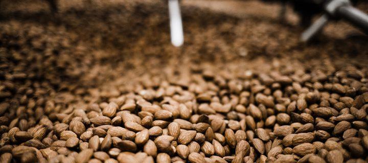 Almendralia Ibérica apuesta por la mejora continua del cultivo de la almendra en España