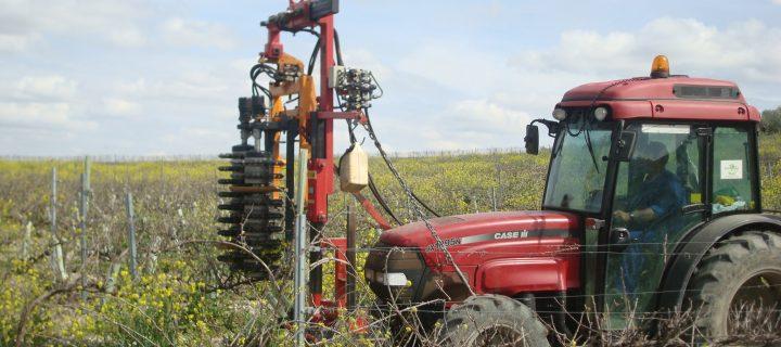 Últimos avances en maquinaria para la poda de frutales