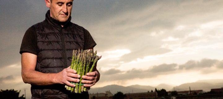 El espárrago verde más sostenible en la Vega de Granada