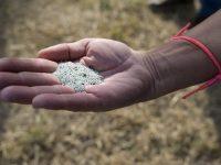 Estudian reutilizar zeolitas usadas en la potabilización del agua como fertilizantes agrícolas
