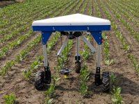 EIT Food en busca de proyectos innovadores en el sector agroalimentario del sur de Europa