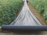 Coexphal colabora para lograr una solución a la gestión de los residuos inorgánicos del sector