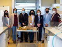 Premian una investigación sobre la limpieza de barricas de roble con plasma frío