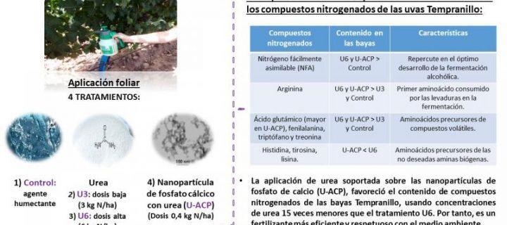 Aplicación foliar de nanopartículas de urea en un viñedo de Tempranillo